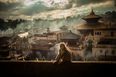 Pashupatinath Hindu temple, Kathmandu, Nepal - have this same photo complete with monkey