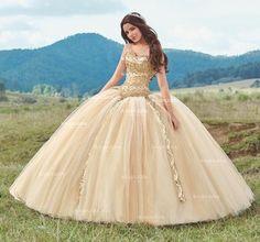 Beaded A Line Quinceanera Dress by Ragazza Fashion B87-387