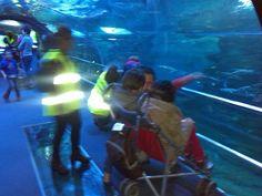 Visita guiada al Aquarium de Larrialdiak Fundazioa con Pausoka Elkartea el 21 de febrero de 2015