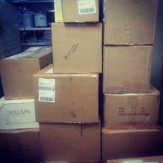 """41 boxes just in. #thisismyLUXmas @luxbeautybtqyeg #Holiday2014 #LUXmas14 #luxbeautybtqyeg #LUXbeautybtqyeg"""