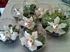 Small glass bowls with succulents and pink & white flowers