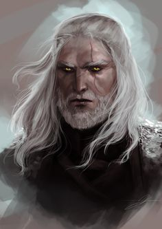I'm playing the witcher and yes, I now love Geralt. Witcher 3 Art, The Witcher Books, The Witcher Game, Fantasy Story, Fantasy Male, Fantasy Warrior, Dark Fantasy, Character Portraits, Character Art