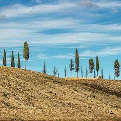 Lonely trees  . We  Tuscany #wonderful A so beautiful landscape #tuscany #love #cypress #art #instadaily #instacool #instalove #instamood #instatravel #instagood #chiantilovers #ilovetuscany #igers #igersitalia #igersfirenze #italia #chiantilife #chianti #iloveyou  Photo credit: @jazz0902