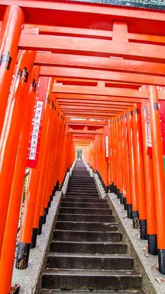 Crimson torii gates at the Hie Shrine - Tokyo, Japan