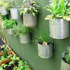 Décoration de jardin avec des boîtes d'aluminium