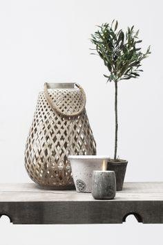 ASTRID lantern, FLORA decoration olive tree, OTINE flower pot and tealight. Lene Bjerre, spring 2014.