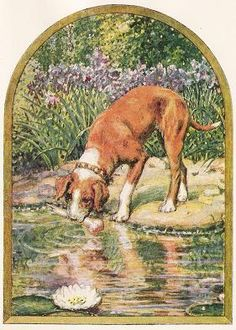 The Dog And His Image. - Jean De La Fontaine Fables