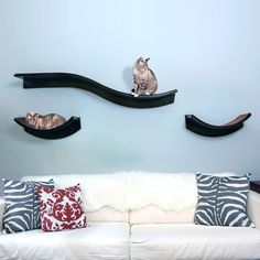 Lotus Cat Shelves from The Refined Feline – hauspanther