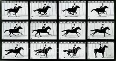 """""""The Horse in Motion"""" Photographed by Eadweard Muybridge in 1887 as a callotype. This was a Electro-photographic investigation showing a series of consecutive images of a horse at a gallop. Moving Pictures, Horse Pictures, Fine Art Photo, Photo Art, Thomas Alva Edison, Persistence Of Vision, Eadweard Muybridge, New Fine Arts, Black Chalk Paint"""
