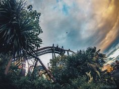 Everything You Need to Know About Thorpe Park's Fright Nights! Argentina Culture, Thorpe Park, Visit Argentina, Fright Night, South Wales, Scuba Diving, Where To Go, Cities, Places To Visit