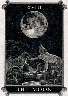Gallery of Images from the Arcana Tarot. The Lovers Tarot Card, Greek Mythology Gods, Online Tarot, Visionary Art, Tarot Decks, Playing Cards, Calligraphy Fonts, Black And White, Alchemy