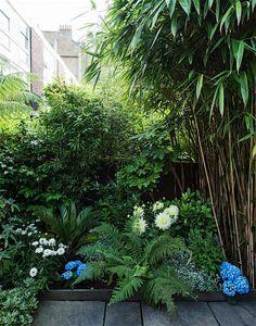 Urban Garden Design, Small Garden Design, Pergola Garden, Rooftop Garden, Pergola Kits, Rustic Pergola, Courtyard Gardens, Roof Gardens, Small City Garden