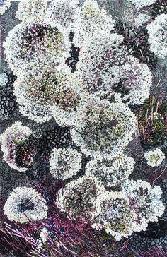 Henriette Ousbäck - her freestyle embroidery works are amazing - stuns me, inspires me! Wow!