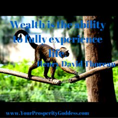 Wealth is the ability to fully experience life. Be open to wealth and abundance in all areas of your life! #mindset #moneymanagement
