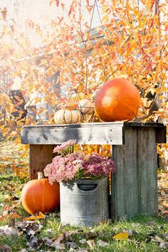 Autumn Photography - Keeping With The Times Autumn Decorating, Decorating Ideas, Happy Fall Y'all, Autumn Photography, Autumn Garden, Fall Harvest, Autumn Inspiration, Fall Halloween, Halloween Halloween
