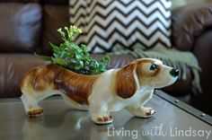 Thoughts on Adding Quirky Charm - Makely School for Girls Hounds Of Love, Vintage Thrift Stores, Getting A Puppy, Vintage Planters, Vintage Dog, Basset Hound, Little Dogs, Bobble Head, Crafts To Make