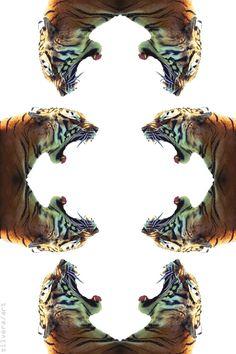 24 year old girl, loves fashion. Monogram Wallpaper, Wild Creatures, Geometric Art, Animal Kingdom, Illusions, Illustration Art, Illustrations, Photoshop, Kitty