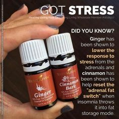 Young Living Essential Oils: Stress