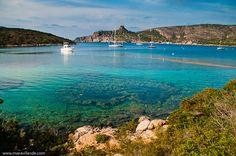 Isla de la Cabrera -Archipiélago de La Cabrera Entre los ecosistemas más importantes del litoral de la isla destacan las praderas de posidonia oceánica