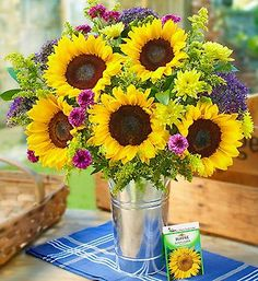 A Ray of Sunshine™ + Free Gift | Sunflowers | 1800FLOWERS.COM-95251