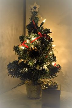 Tales from a Buttonhole: Vánoce / Christmas