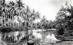 Natures Serenity and Calmness along the Pagsanjan River, Pagsanjan, Laguna, Philippine Islands. Historical Pictures, Philippines, Serenity, Islands, Cities, River, Landscape, History, Nature