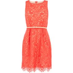 Oasis Lily Lace Dress ($110) ❤ liked on Polyvore featuring dresses, vestidos, coral, short dresses, red lace dress, cut out dress, short lace cocktail dress and red cut-out dresses