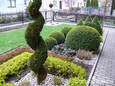 Ogród mały, ale pojemny;) - strona 114 - Forum ogrodnicze - Ogrodowisko