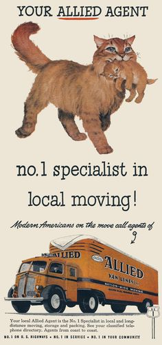 Mom!cat is a specialist in moving delicate beloved items without damage.