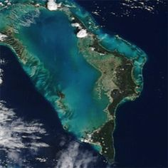 Abacos coral reef, The Bahamas  The 4 biggest coral reef in the world