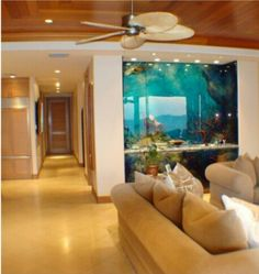 Aquarium as a wall divider. You can see it from both sides.