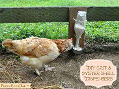 DIY Wine Bottle Chicken Grit & Oyster Shell Dispenser Tutorial - Fresh Eggs Daily®