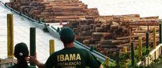 PROF. FÁBIO MADRUGA: IBAMA visa lançar concurso com vagas de nível médi...