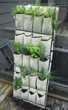 Gardening on a Budget: DIY Vertical Gardening. Repurpose a shoe organizer into a vertical herb garden. Survival Gear and Prepping Ideas | Survival Life | http://diyready.com/diy-vertical-gardening/# #VerticalGarden