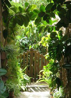 Valdemossas secret gardens