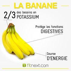 LA BANANE : Elle vous apporte des glucides de qualité mais aussi des fibres qui régulent leur assimilation par l'organisme.  Son potassium en fait un allié de choix pour soulager les personnes tendues ! Alors pourquoi s'en priver ?