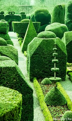 Topiary Gardens are full of secrets, playful, by day and shadows at night.
