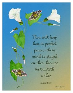 Bindweed and emperor hawk moths Bible quote watercolor artwork typography thou wilt keep him in perfect peace Bible Quotes About Peace, Scripture Quotes, Bible Scriptures, Word Of Faith, Word Of God, God Will Provide, Perfect Peace, Seeking God, Christian Encouragement