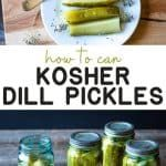 Kosher Dill Pickles, Canning Pickles, Easy Canning, Canning Recipes, Kerr Jars, How To Make Pickles, Yellow Mustard Seeds, Refrigerator Pickles, Thing 1
