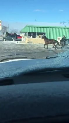 """""""The Fast and The Furious: Amish Drift"""" - Source Best Funny Videos, Best Funny Pictures, Amish Town, Dankest Memes, Funny Memes, Funny Shit, Funny Photoshop Pictures, The Furious, Video Go"""