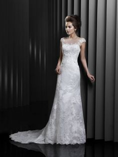 White Rose Bridals, bridal wear specialists in Staffordshire. Designer wedding dresses, from leading designers. White Rose of Rugeley bridal wear specialists, White Rose of Stafford bridal wear specialists. Wedding Dresses Photos, Used Wedding Dresses, Wedding Dress Styles, Designer Wedding Dresses, Bridal Dresses, Bridesmaid Dresses, Wedding Dress Train, Wedding Dress Shopping, White Tulle Dress