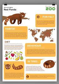 Resultado de imagem para zoologist infographic