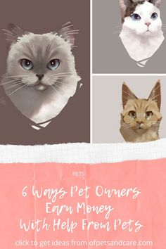 There are ways pet owners earn money with the help of their pets. By being creative in connection to #pets and animals in general. #cats dogs