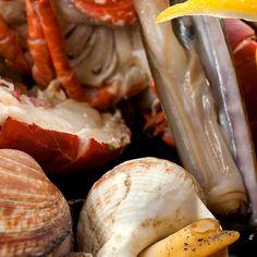 Zeeland is een rijke voorraadkast als het om eten gaat, met zoveel streekproducten, traditionele gerechten én Michelinsterren. Om