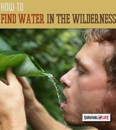 Finding Water When Lost in the Wilderness | Essential Skills When Bugging Out by Survival Life http://survivallife.com/2015/04/22/finding-water-in-the-wilderness/