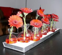 Glass Vase, Bloom, Table Decorations, Furniture, Home Decor, Water, Google, Gripe Water, Decoration Home