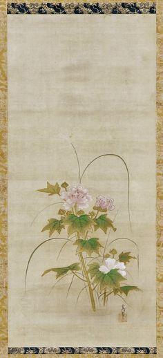 Hibiscus (part of a set). Japanese Hanging scroll. Artist: Kano Tsunenobu 狩野常信. Edo period, mid 17th-early 18th century. Freer.