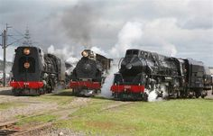 Mainline Steam Tours is an organisation devoted to the restoration and operation of historic mainline steam locomotives, regular day excursions and multi-day tours are operated. Train Engines, Sight & Sound, Steam Engine, Steam Locomotive, Dieselpunk, Day Tours, Train Station, New Zealand, Trains