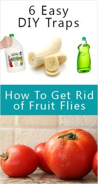 Fruit Flies Traps...vinegar with few drops of dish soap work great !!