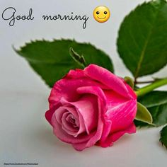 1528 best good morning and other wishes images on pinterest in 2018